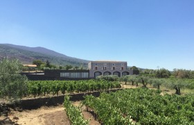 EXTENSION OF CANTINA MARCHESA – Etna [Italy]